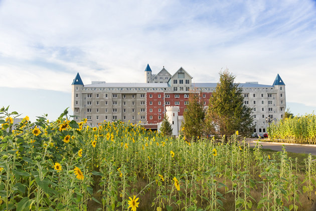 The Grand Castle Apartments behind sunflower field